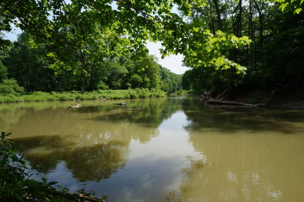 Ontario Nature's first riverine nature reserve