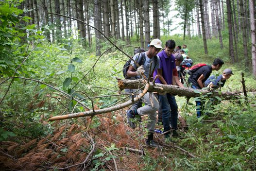 People removing fallen branches from the hiking trail