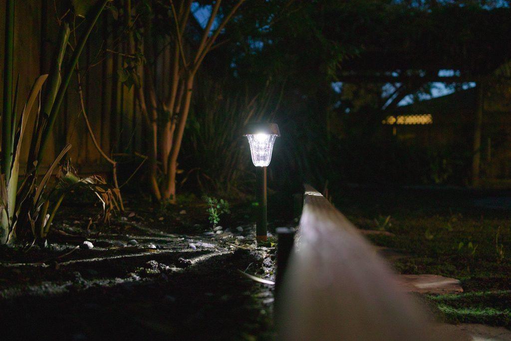 An outdoor scene at night with some trees surrounding a lamp