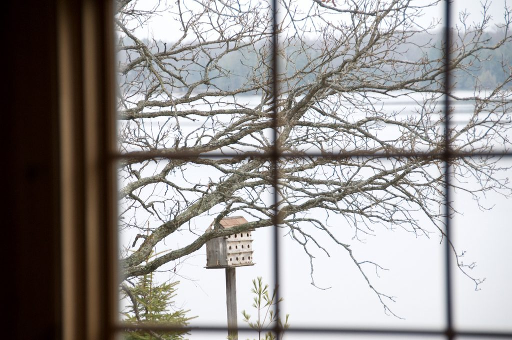 A view through a window of a birdhouse and a lake behind it