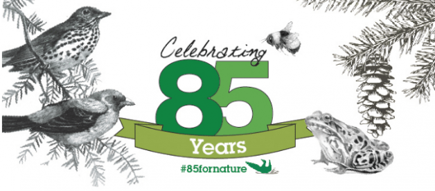 Ontario nature is celebrating 85 years of active nature conservation