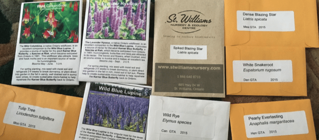 Packets of Native wildflower seeds