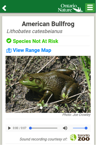 Species Profile Example from The Ontario Reptiles and Amphibians Atlas