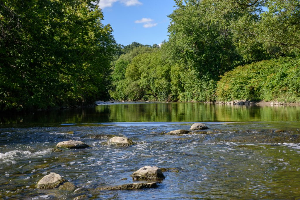River with rocks and tree line