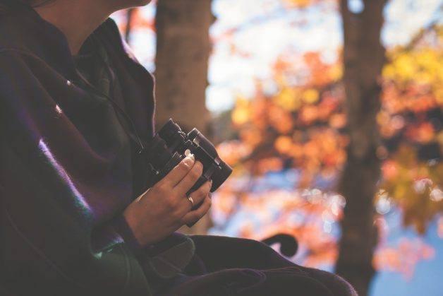 Seeing Nature in Ontario through Binoculars