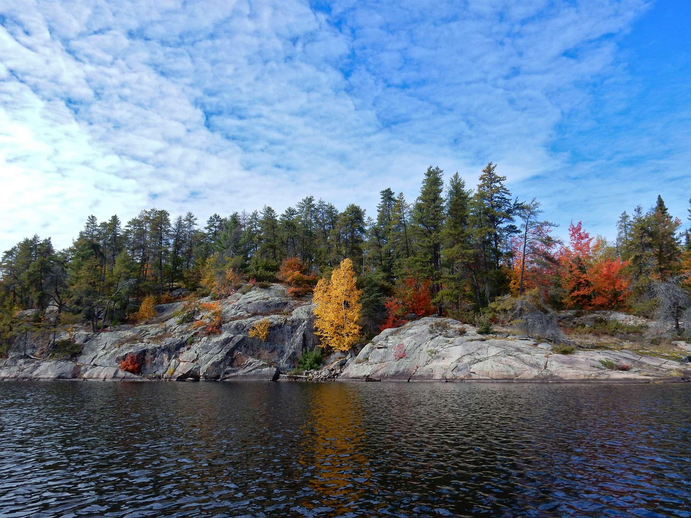 Ontario Nature Blog Environmental Conservation