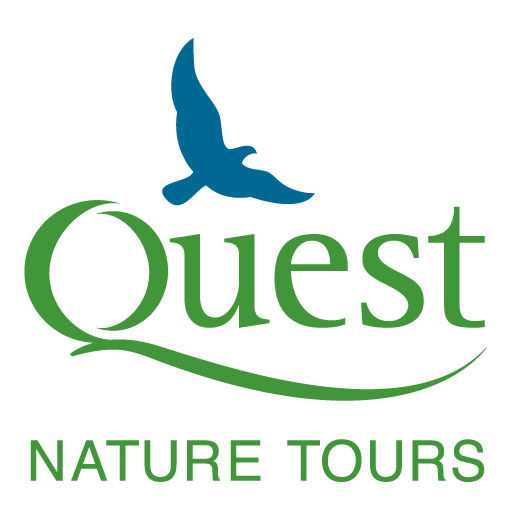 Quest Nature Tours logo