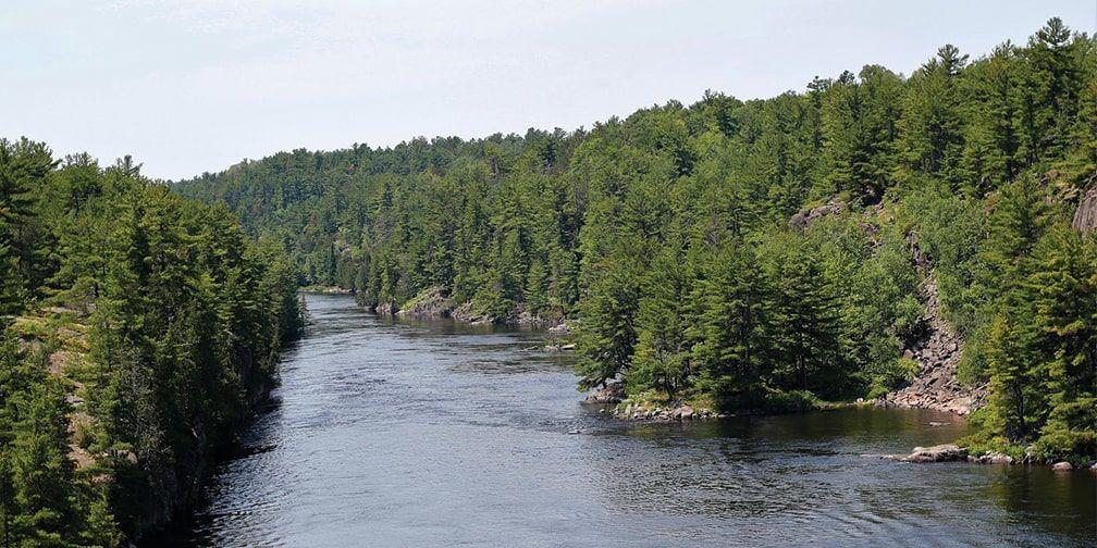 French River vista