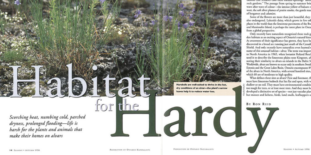 Habitat for the Hardy magazine article