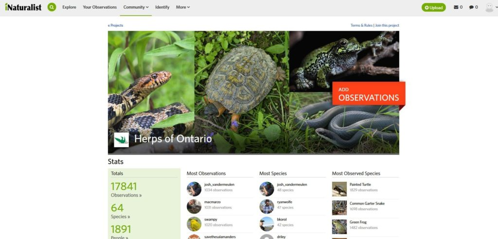 Screenshot of iNaturalist