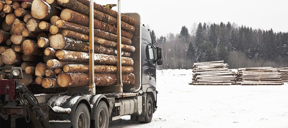 Logging truck loaded with fresh logs