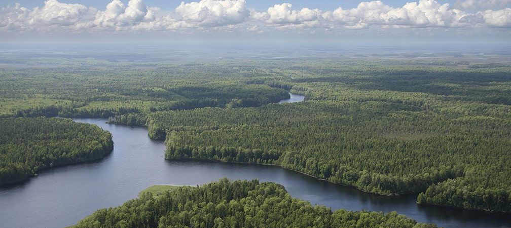 aerial view of northern boreal forest