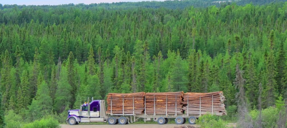 Logging truck hauling logs with forest in the background
