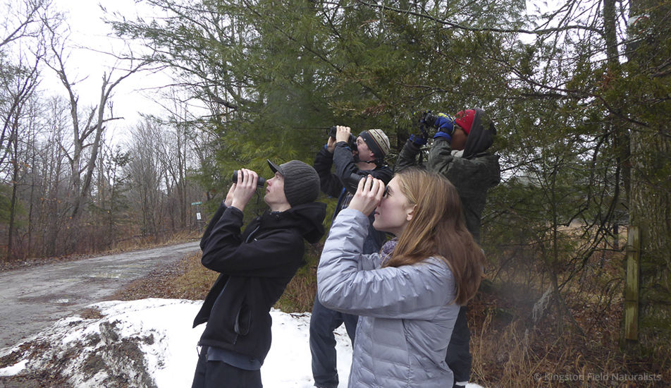 Teen naturalists birdwatching, Kingston Field Naturalists