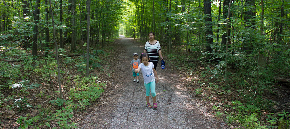 Family hiking on a trail in the woods
