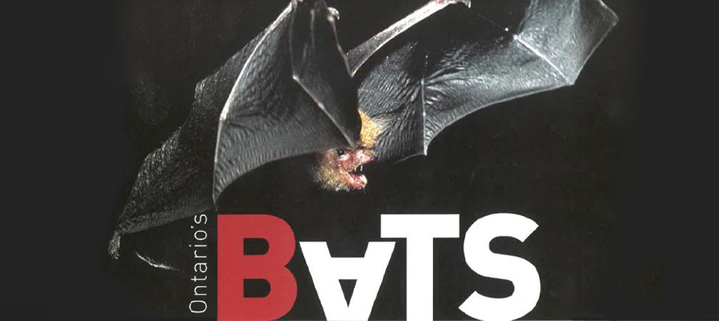 Ontario Bat Guide cover © Michael Patrikeev