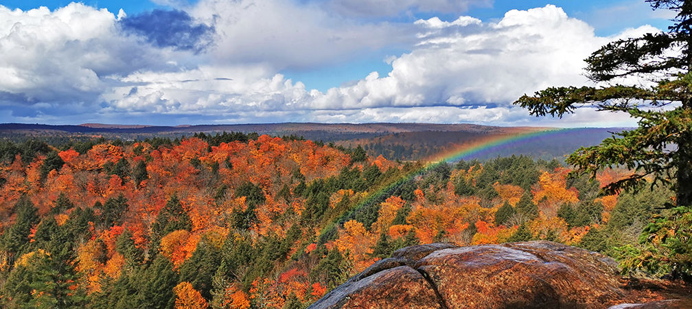 Algonquin Provincial Park, Track and Tower Trail, autumn rainbow, expansive forest and beautiful lakes