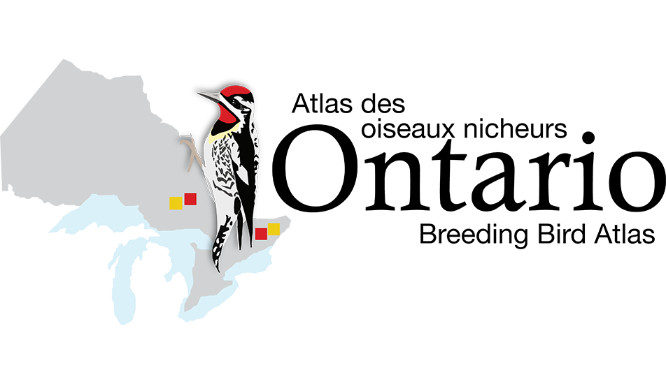 Ontario Breeding Bird Atlas-3 logo