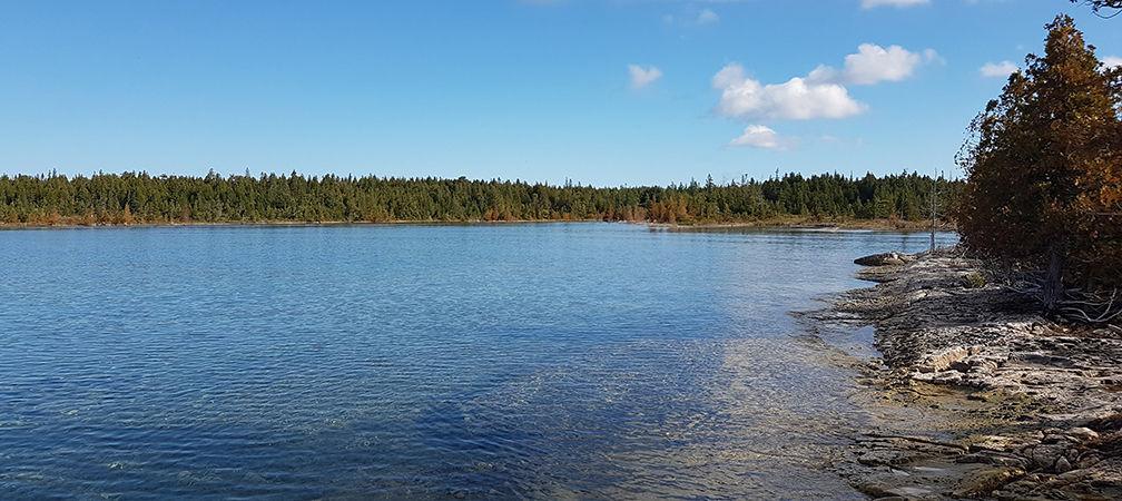 Baptist Harbour Nature Reserve Shoreline