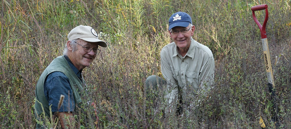 Volunteers planting shrubs and trees at Sydenham River Nature Reserve