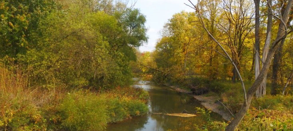 October foliage along the Sydenham River
