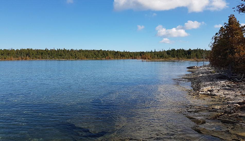 Baptist Harbour Nature Reserve shoreline, Lake Huron
