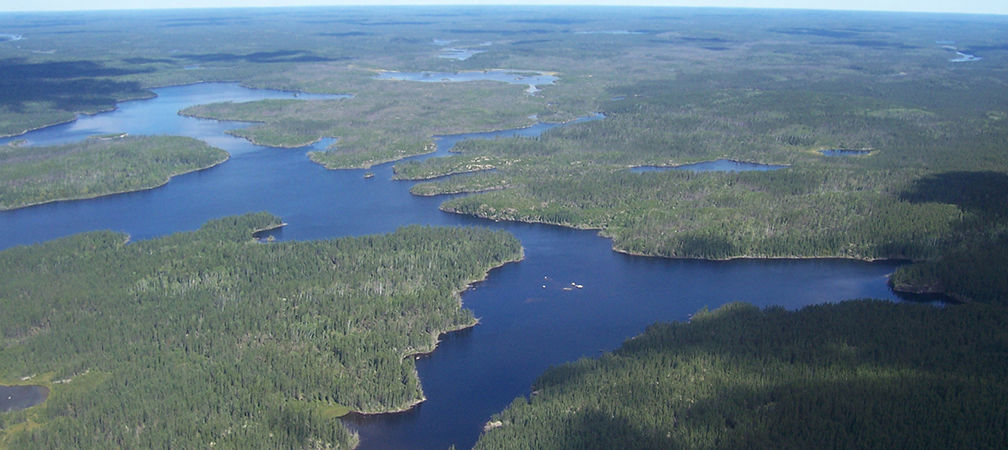 Wabakimi Provincial Park aerial view, spruce forest and beautiful extensive shoreline