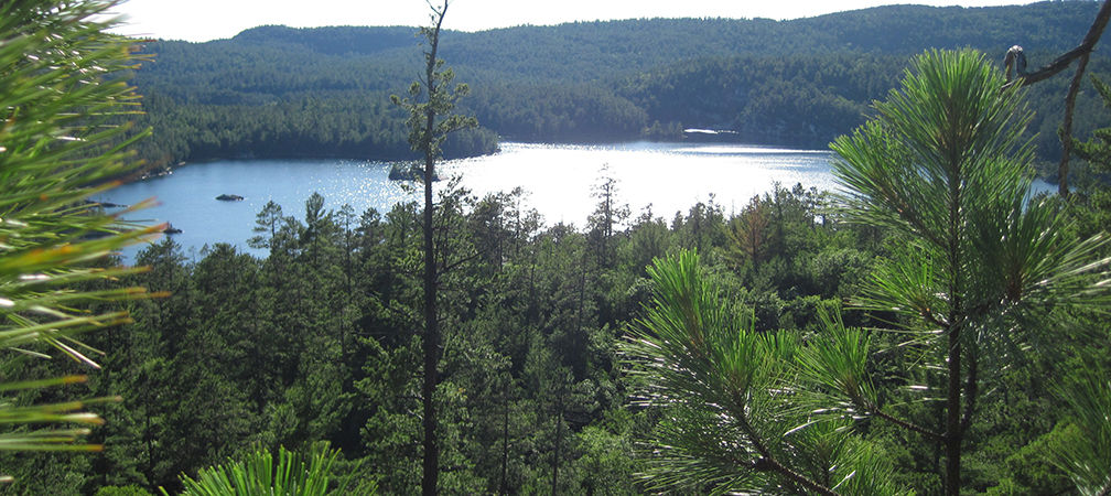 Wolf Lake, forest and lake from a lookout