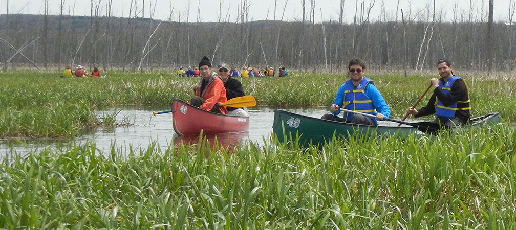 Paddlers enjoying a  Minesing Wetlands canoe tour
