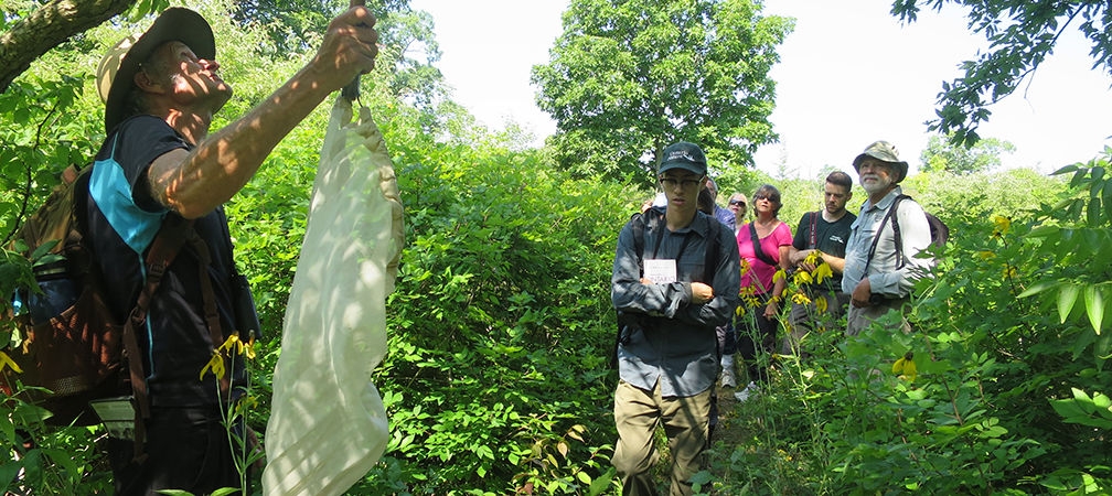 Butterfly ID Workshop at Stone Road Alvar