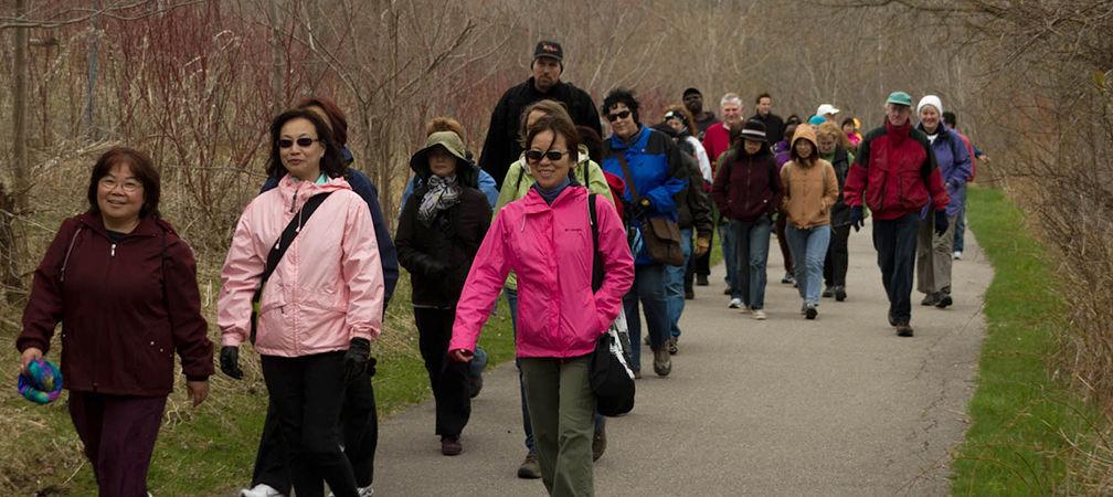 Group walk along Rouge Park trails