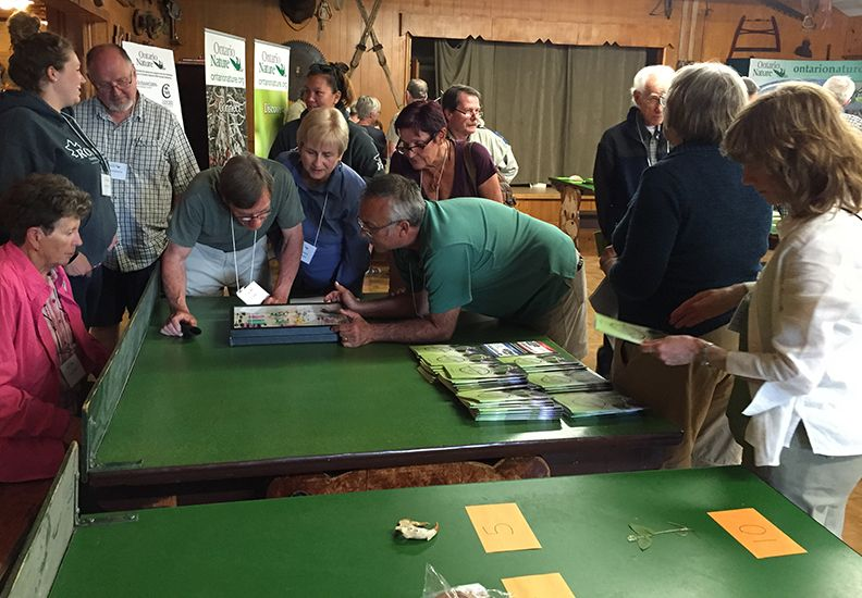 Great Ontario Natural History Quiz, Ontario Nature's 85th Annual Gathering