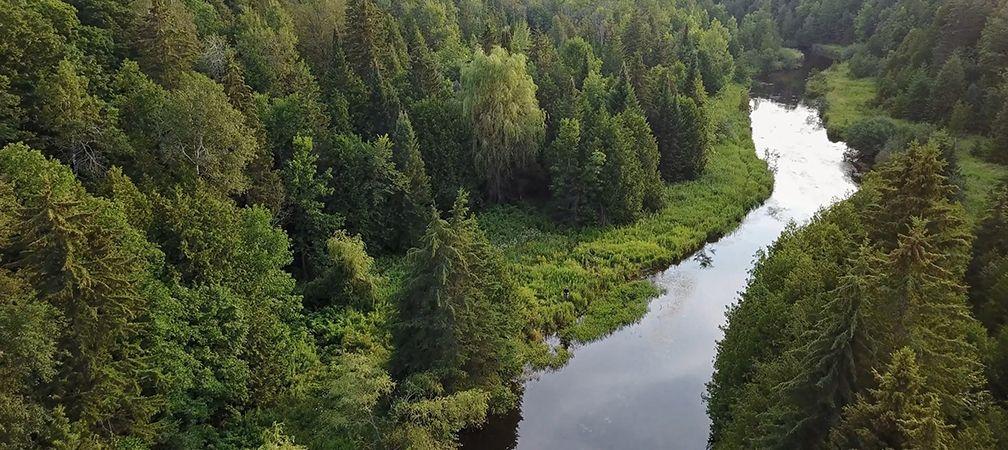 West Credit River
