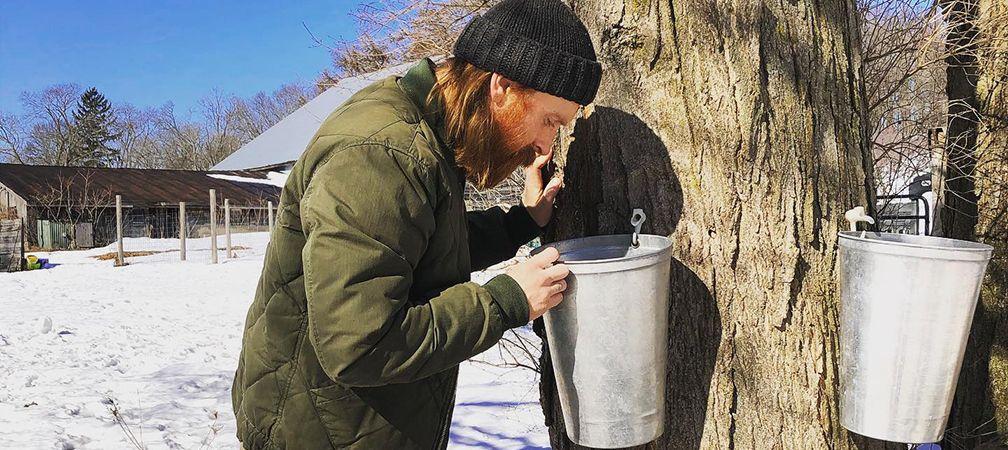 Spencer checking on fresh maple maple sap pails