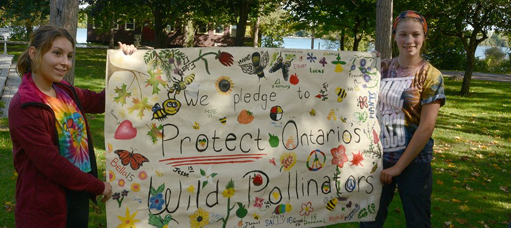 Protect Ontario's Wild Pollinators banner, Youth Summit 2014