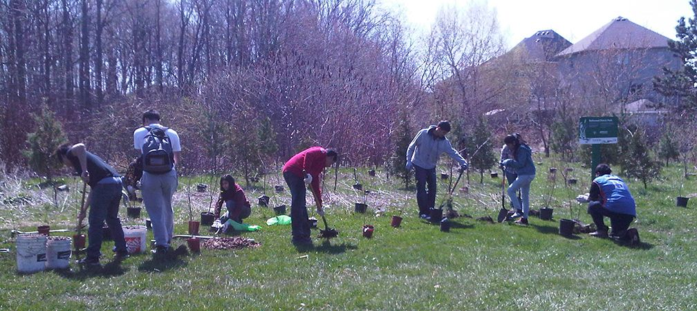 Tree planting, Missisauga, Our Special Spaces 2011